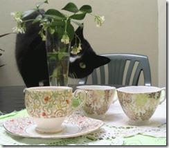 crockery_cat