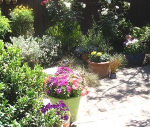 Dad_garden